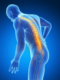 back-pain-page